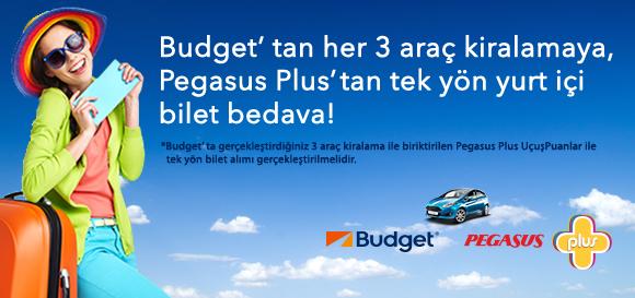 Pegasus Plus – Budget