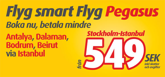 Fly Smart Fly Pegasus